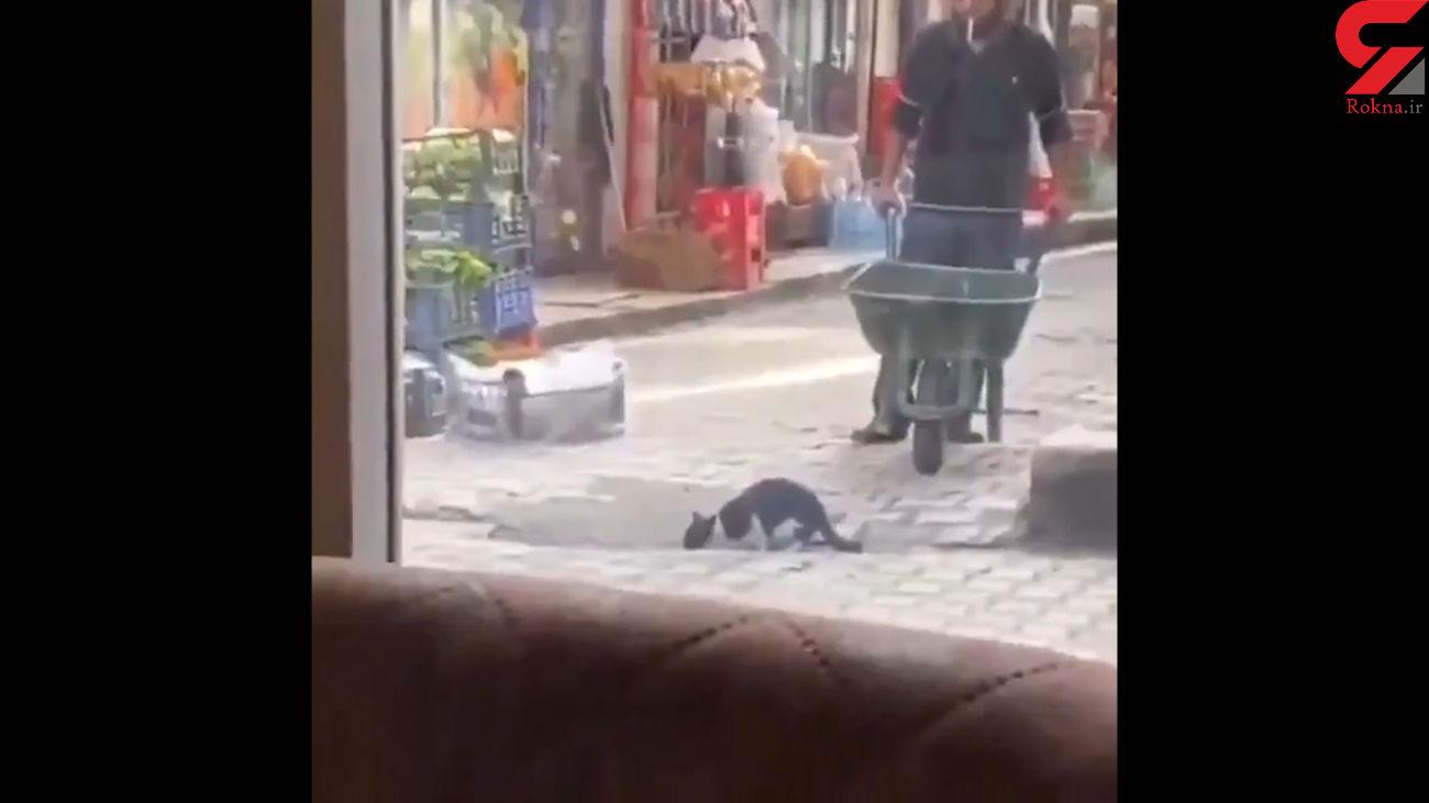 پربازدیدترین ویدیوی جهان از یک کارگر مهربان + فیلم