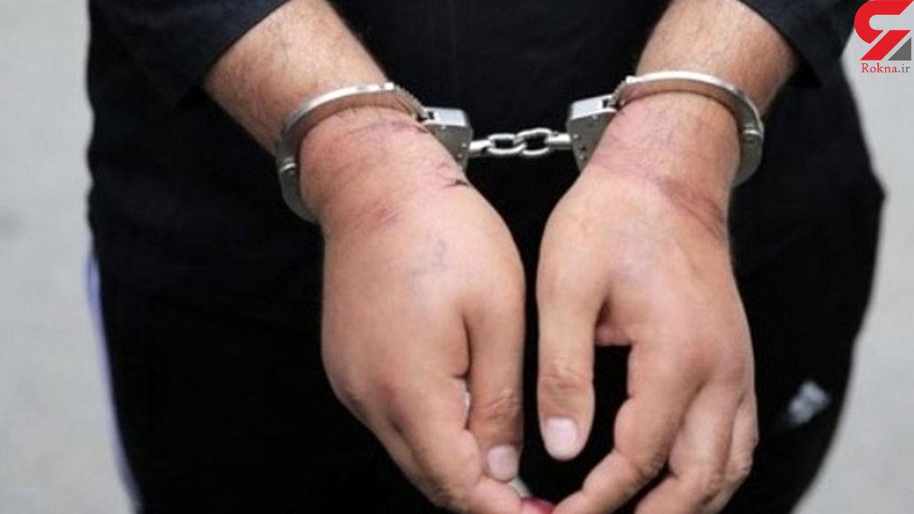 ربودن سارق 12 ساله در مشهد/ حمله سگ های وحشی برای اعتراف