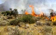 7 هکتار از جنگل های پلدختر در آتش سوخت