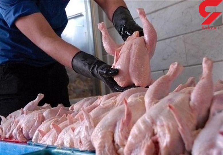 مرغ در سراشیبی قیمت/ 800 تومان فاصله تا نرخ مصوب