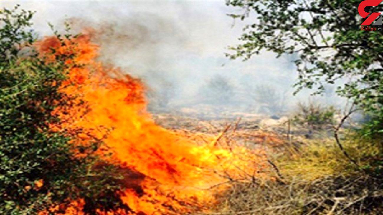 آتش سوزی  در خیابان دانشگاه پیام نور مهاباد