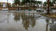 مشکل ریزگردهای کرمان با بارانهای اخیر حل نمیشود
