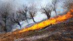 مهار آتش سوزی در مراتع و جنگل های کریک