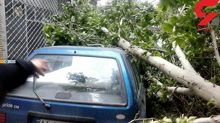 طوفان طی یکی دو ساعت آینده از تهران خارج میشود + عکس