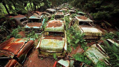 راز این خودروهای رها شده چیست؟+عکس