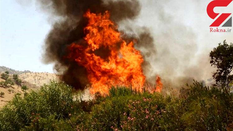 ۲۵ هکتار از مراتع و مزارع ایوان در آتش سوخت