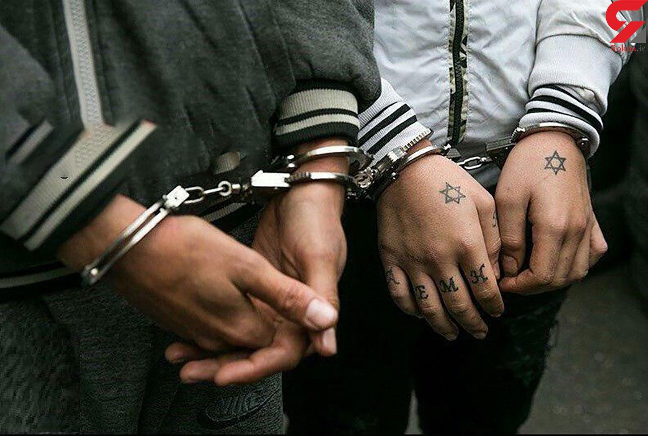 دستگیری 9 سارق حرفهای در زنجان