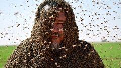 عکس های دیدنی از مرد زنبوری + جزییات
