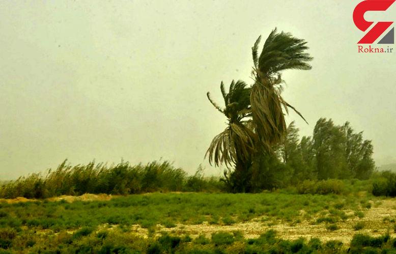 باد و گرد و خاک ، مهمان امروز کرمان