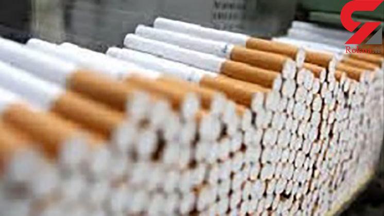 ۱۹ میلیون جریمه برای عامل قاچاق سیگار در قزوین