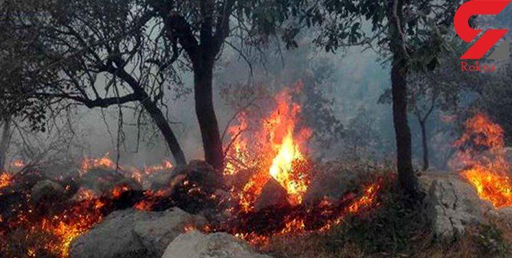 ارتفاعات مارین گچساران همچنان در آتش می سوزد