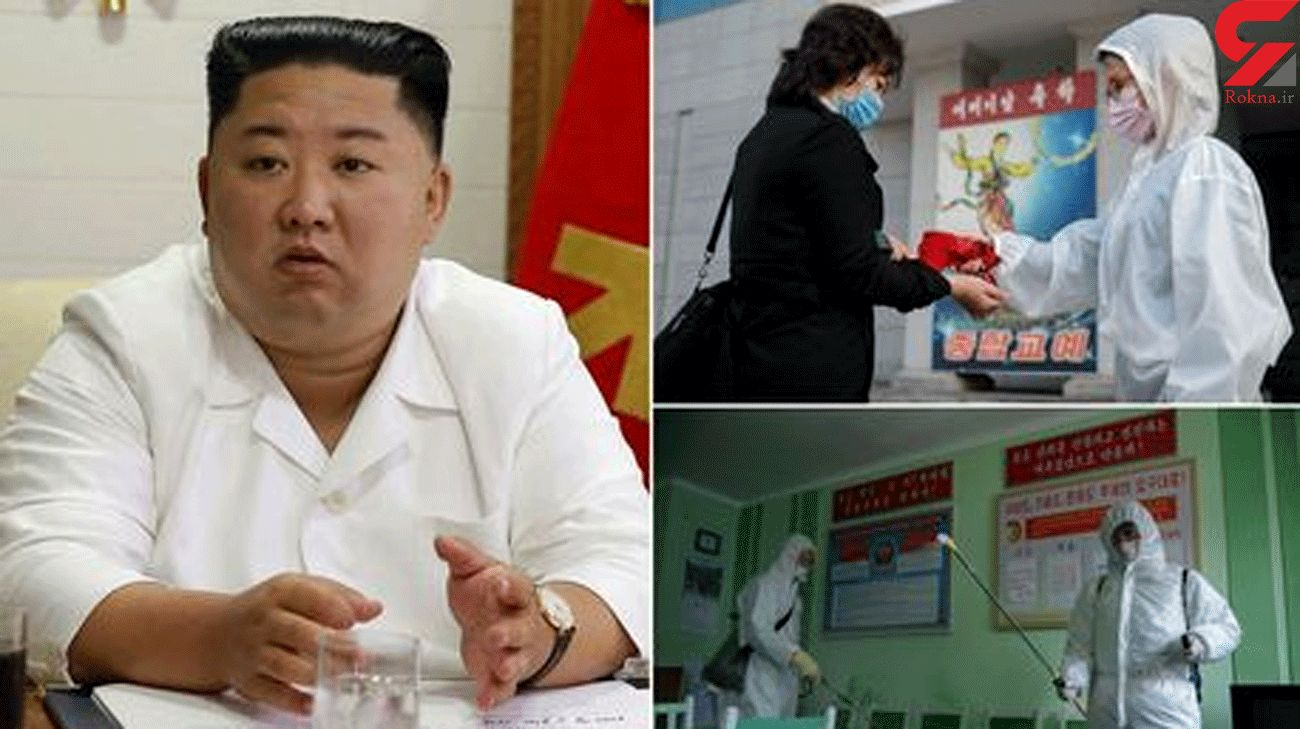 North Korea 'developing Covid vaccine using data hacked from foreign scientists'