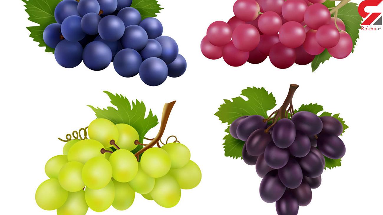 معادل گوشت در میوه ها چیست؟