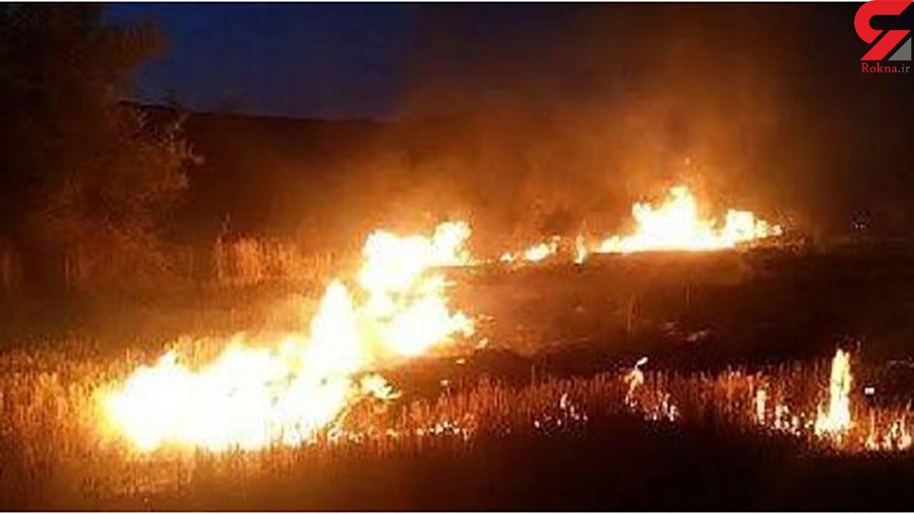 عملیات ویژه برای مهار آتش سوزی در ارتفاعات اطراف شیراز