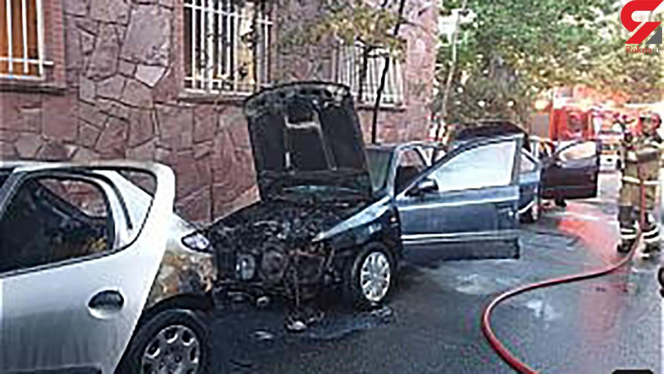 بازداشت عامل آتش افروزی عمدی 4 خودرو در دیباجی + عکس