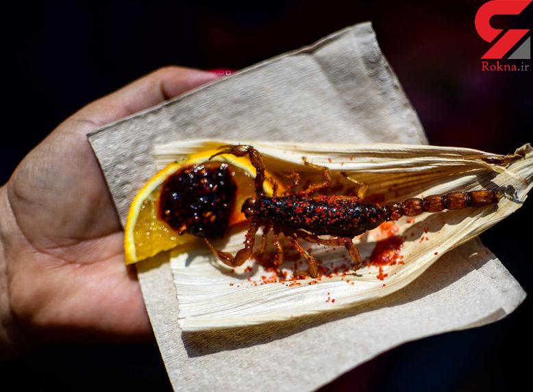 ایده جدید یک رستوران مکزیکی،منوی حشرات+تصاویر
