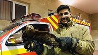 وحشت خانواده تهرانی از عقاب در بلوار ارتش + عکس