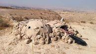 دستگیری 2 شکارچی با شگردی پلیدانه در بوشهر