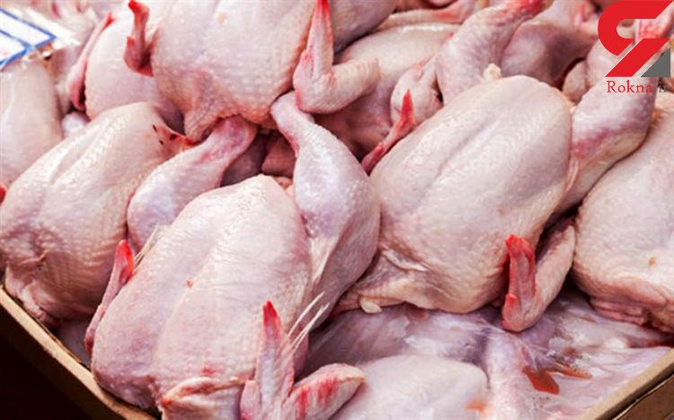 جریان خرید حمایتی مرغ چیست؟ + سند