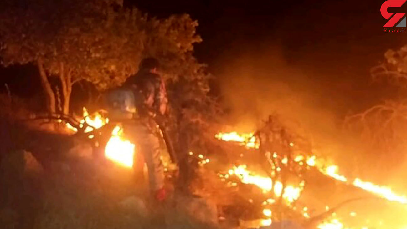 فیلم آتش زدن عمدی درختان روبروی دانشگاه آزاد پردیس / علت این آتش سوزی های عمدی چیست؟