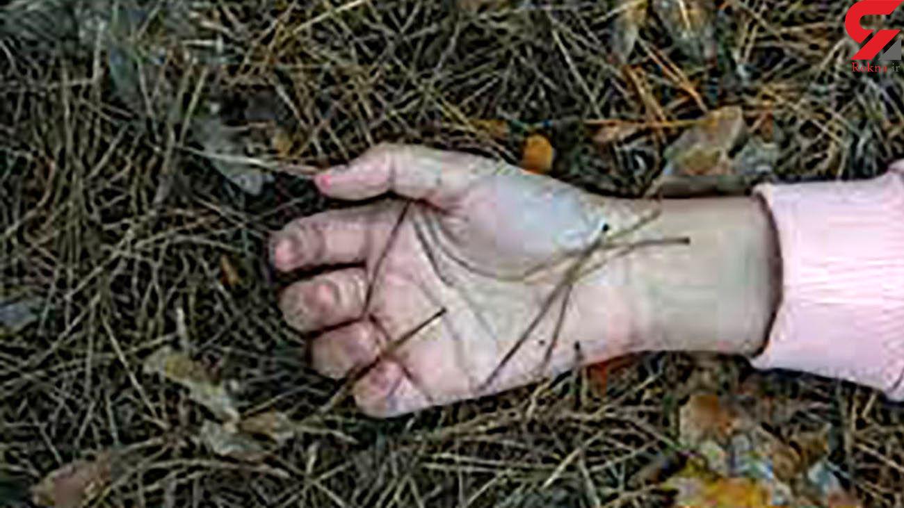 کشف جسد یاسمین در منطقه جنگلی / قاتل که بود؟ + عکس