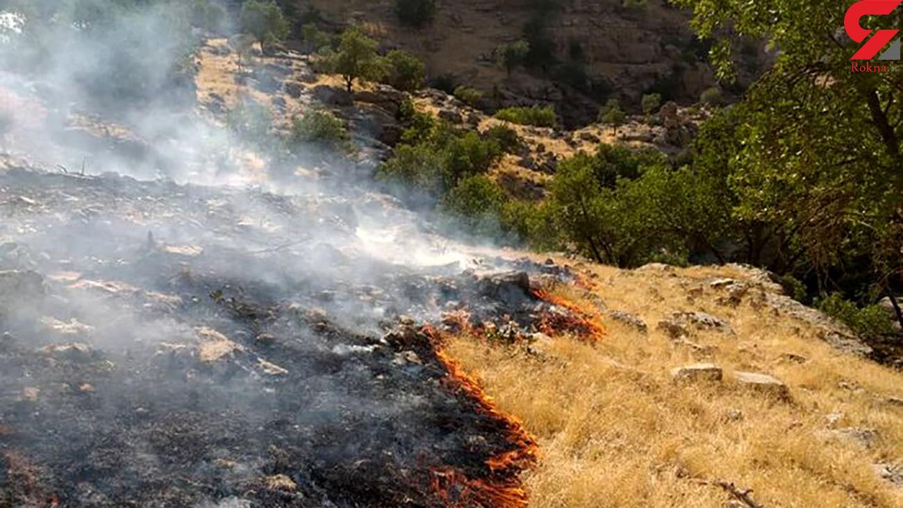ارتفاعات ارم دشتستان استان بوشهربازهم دچار آتشسوزی شد