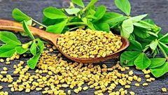 درمان شگفت انگیز دیابت با این گیاه معطر