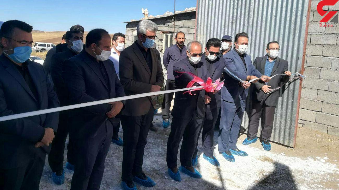افتتاح گاوداری شیری صنعتی 200 راسی در روستای پاشابیگ