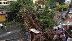 41 کشته به دنبال وقوع طوفان شن و وزش باد در هند