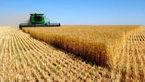 کاهش ۱۰ درصدی تورم در بخش کشاورزی