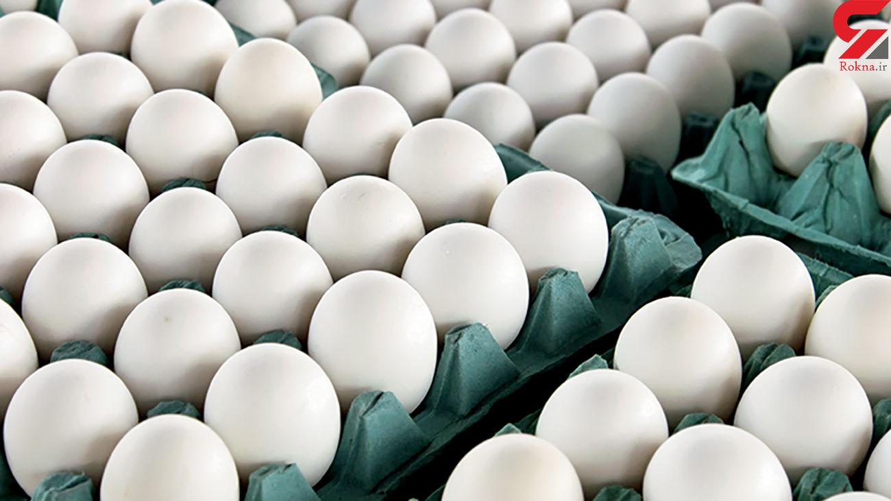 قیمت تخم مرغ کاهش یافت