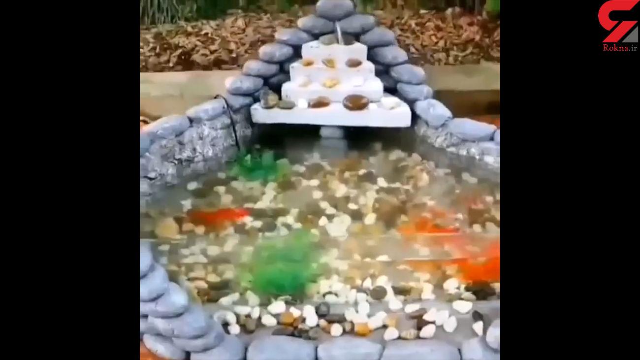 ساختن حوض ماهی + فیلم