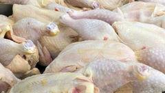 آخرین تحولات بازار مرغ/مرغ ارزان می شود