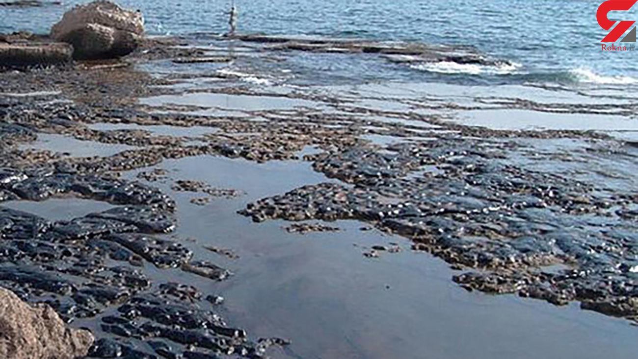 توضیحاتی در خصوص مرگ دامها در رامهرمز در پی مصرف ضایعات نفتی