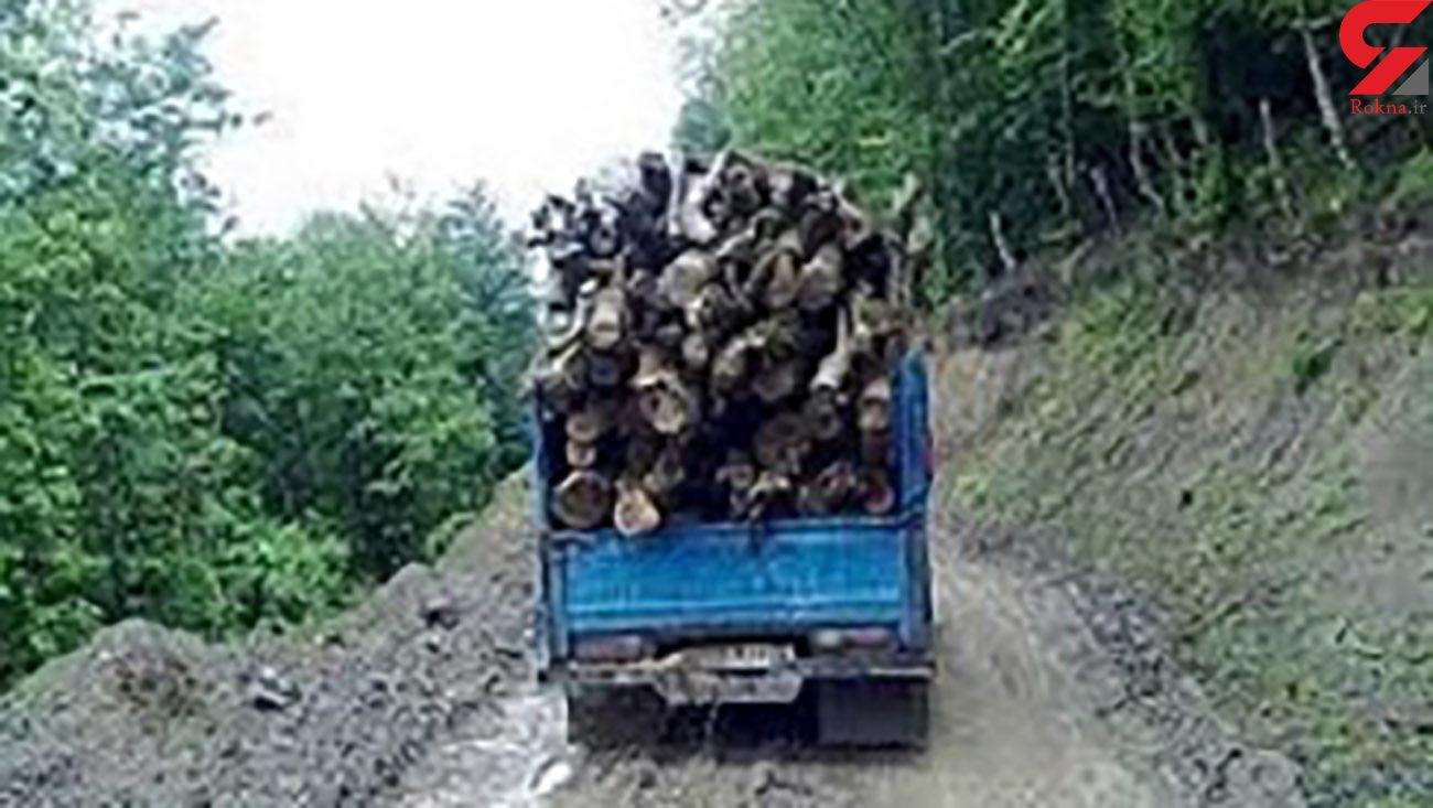 کشف 10 تن چوب قاچاق در نهاوند