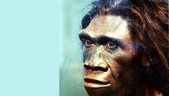 راز انقراض انسان های اولیه کشف شد