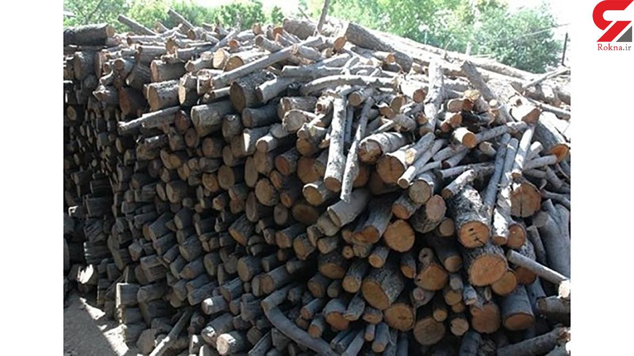 کشف 814  تن چوب قاچاق در مازندران