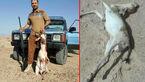 پذیرایی خونین شکارچیان عراقی از آهوهای ایرانی +عکس