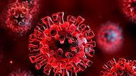 هشدار  بخاطر ویروس جدید کرونا