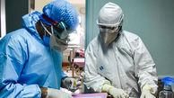 فاجعه کرونایی در بیمارستان های بوشهر