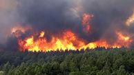 رشیدی: پرونده آتش سوزی جنگل ها در کمیسیون اصل 90 مجلس / نگاه کلانتری به محیط زیست تاسف بار است