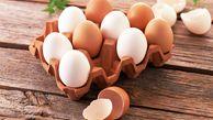تخم مرغ ها را قبل از مصرف بشویید/آلودگی پوسته تخم مرغ زیاد است