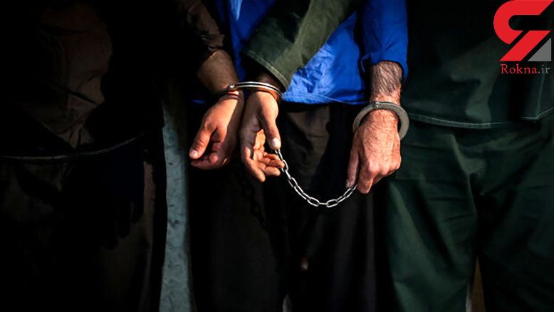 دستگیری ۱۳ سارق و کشف ۱۸ فقره سرقت در ملایر