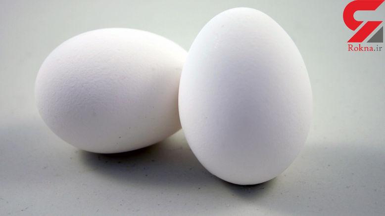 آخرین قیمت تخم مرغ در میادین میوه و تره بار