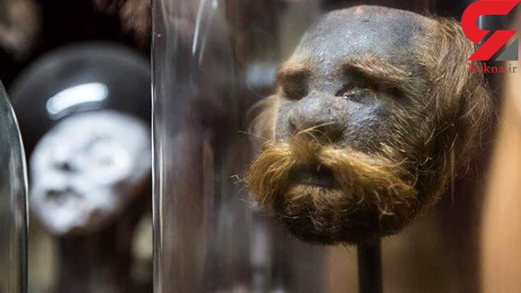 عجیب ترین ها در موزه ای به رنگ خون + تصاویر