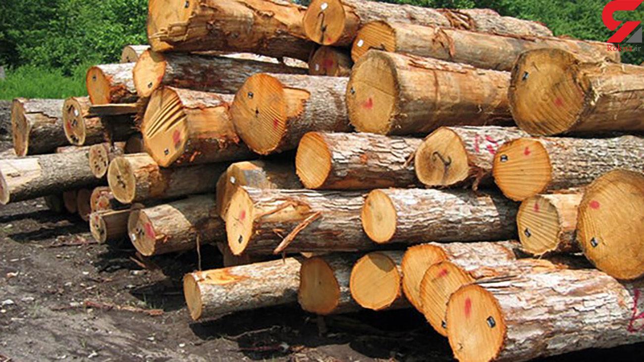 کشف انبارِ 92 اصله چوب جنگلی قاچاق