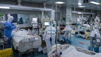 خطر قارچ سیاه در افراد دیابتی / شیوع قارچ سیاه در ایران