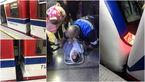 فوری / تصادف شدید 2 قطار مترو تهران در ایستگاه طرشت + فیلم و عکس
