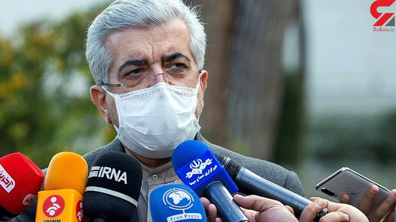 Iran to Use Frozen Funds in Iraq to Buy Vaccine: Energy Minister