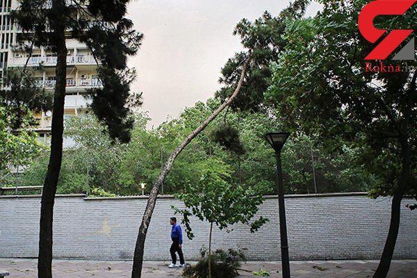 وزش باد شدید امروز عصر در زنجان